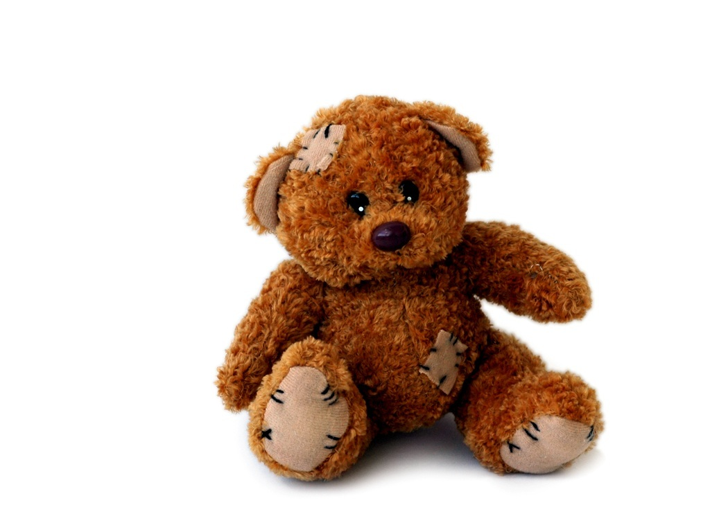 Image Result For Teddy Bear Teacher
