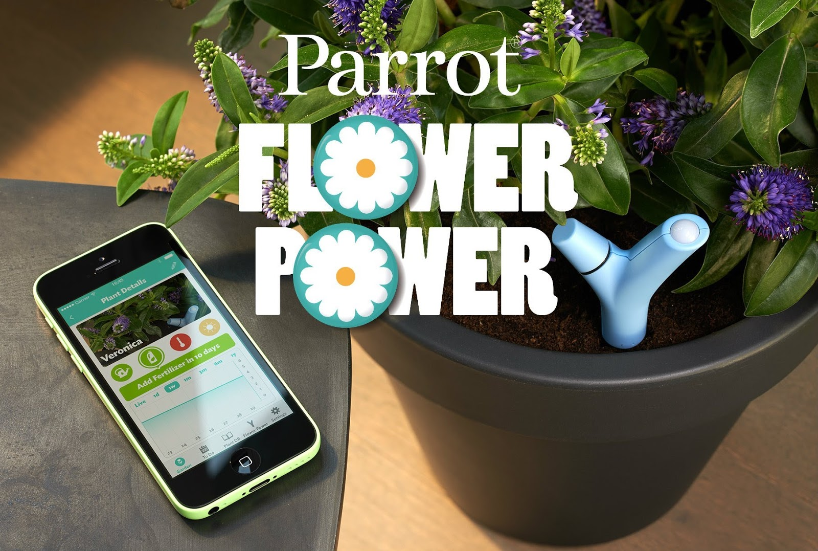 Cannaron Parrot Flower Power