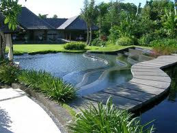Taman minimalis asri