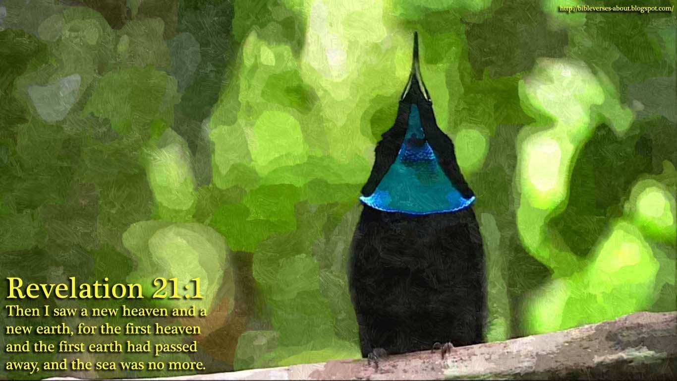 http://4.bp.blogspot.com/-YM6N3-weNo8/UPvTKvOG8TI/AAAAAAAAAsY/-PNHIL0xzjg/s1600/unique+birds+wallpaper+2.jpg