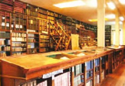museo recoleta