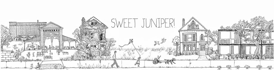 sweet juniper inspiration