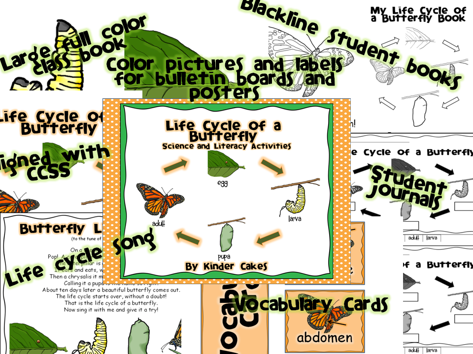 http://www.teacherspayteachers.com/Product/Life-Cycle-of-a-Butterfly-Science-and-Literacy-Activities-1163196