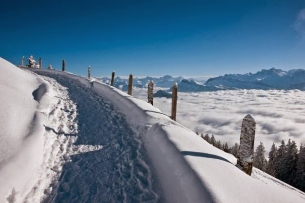 http://www.funmag.org/pictures-mag/miscellaneous-pictures/beauty-of-winter-25-photos/