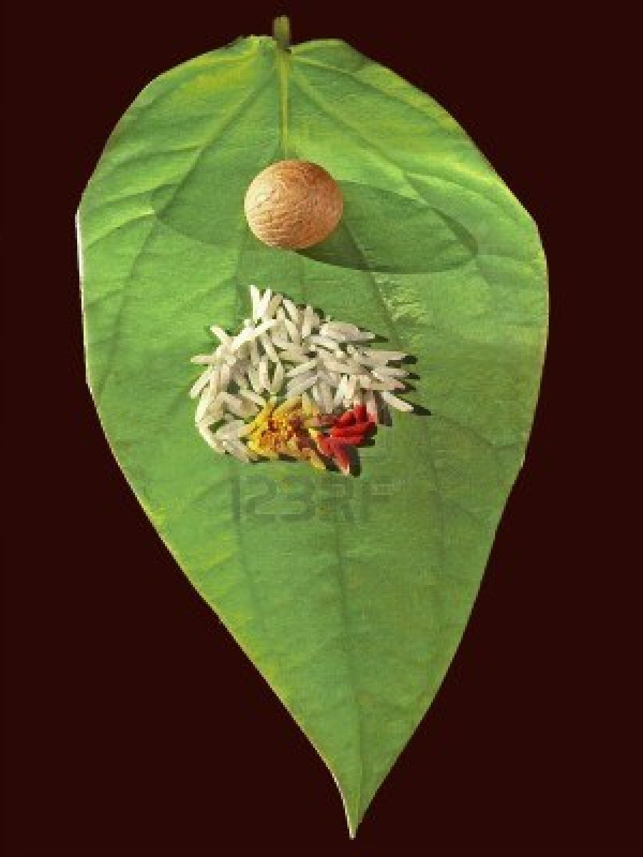 socio economic condition of betel leaf Betel nut research :there's a link between increased betel nut quid nut production and consumption and a substantial rise in the incidence of head and neck cancers among taiwanese men, says a national taiwan university hospital studypresence of cholinomimetic and acetylcholinesterase inhibitory constituents in betel nutthe presence of.