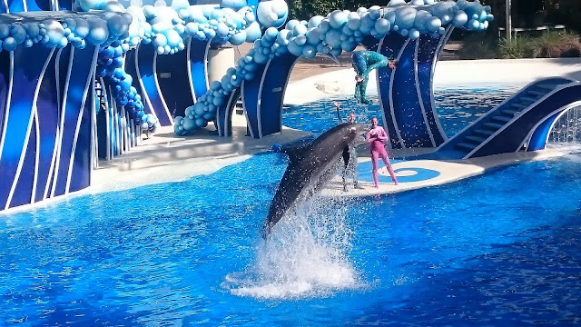 Seaworld 2016 Review