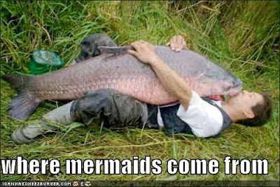 Where mermaids come from