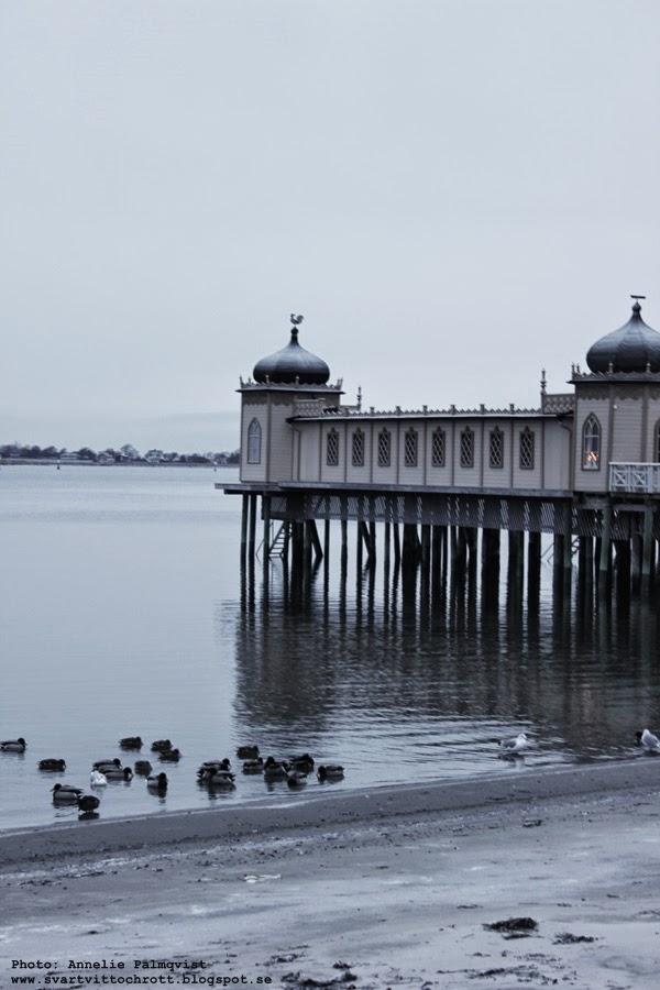 kallbadhuset i varberg, varbergs, strandpromenad, vinter, vinterbild, havet, hav, barnens badstrand,