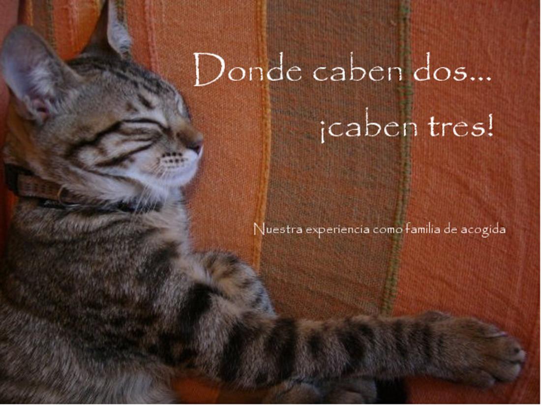 DONDE CABEN DOS... CABEN TRES