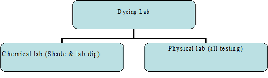 Types of Dyeing lab