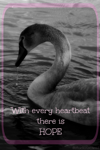 "Just a quote... ""With every heartbeat there is hope."" via @stuckinscared"