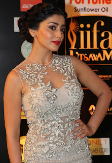 Actress Shriya Saran Stills in Designer Dress at IIFA Utsavam Awards 2016 Day 2   (5).jpg