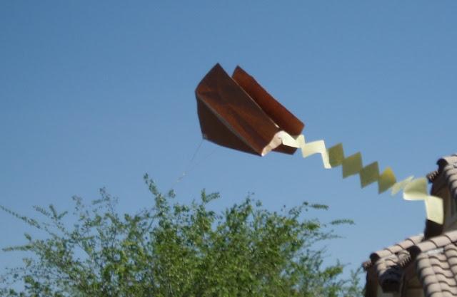 Bag Kites4
