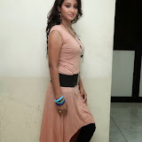 Bhanu Sri Hot Photos at Veedi Pourusham Movie Press Meet 13