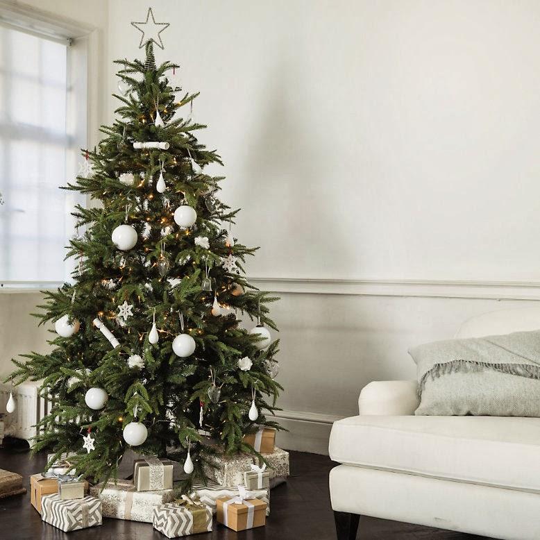 Christmas Tree Company Greytown : Christmas
