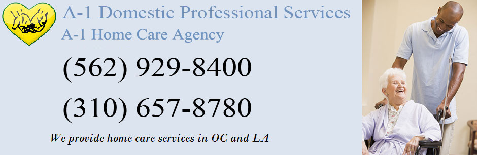 A-1 Domestic Professional Services
