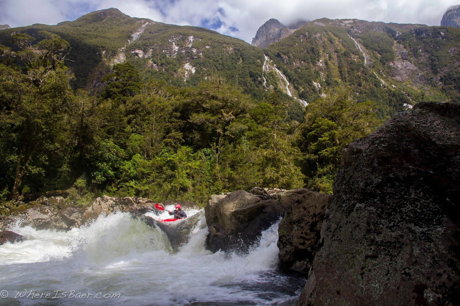 Gonzo looking and feeling small in the Arthur River Valley, NZ, whereisbaer