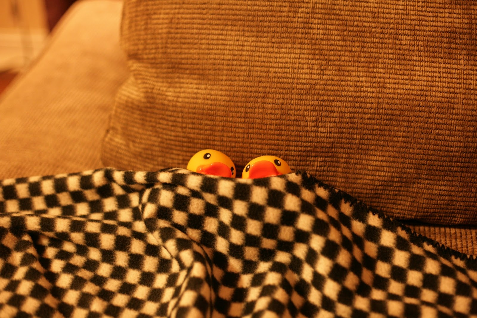 Rubber Duckies in Bed