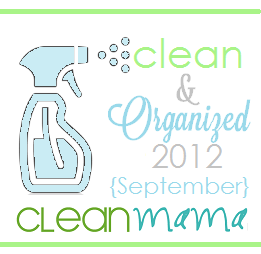 cleanmama.blogspot.com