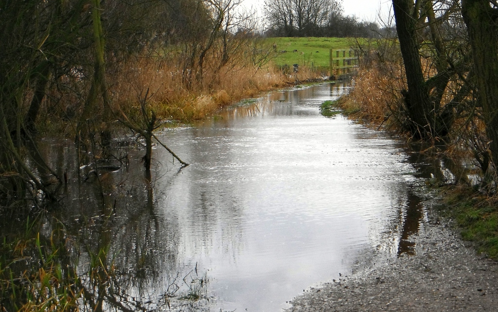 Flooded path across the Doxey Marshes