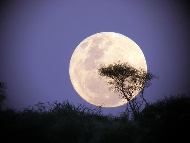 Sossusvlei Dark Sky Reserve Namibia