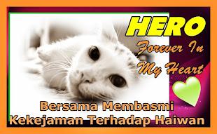 Stiker Cermin Kereta Hero Untuk Dijual