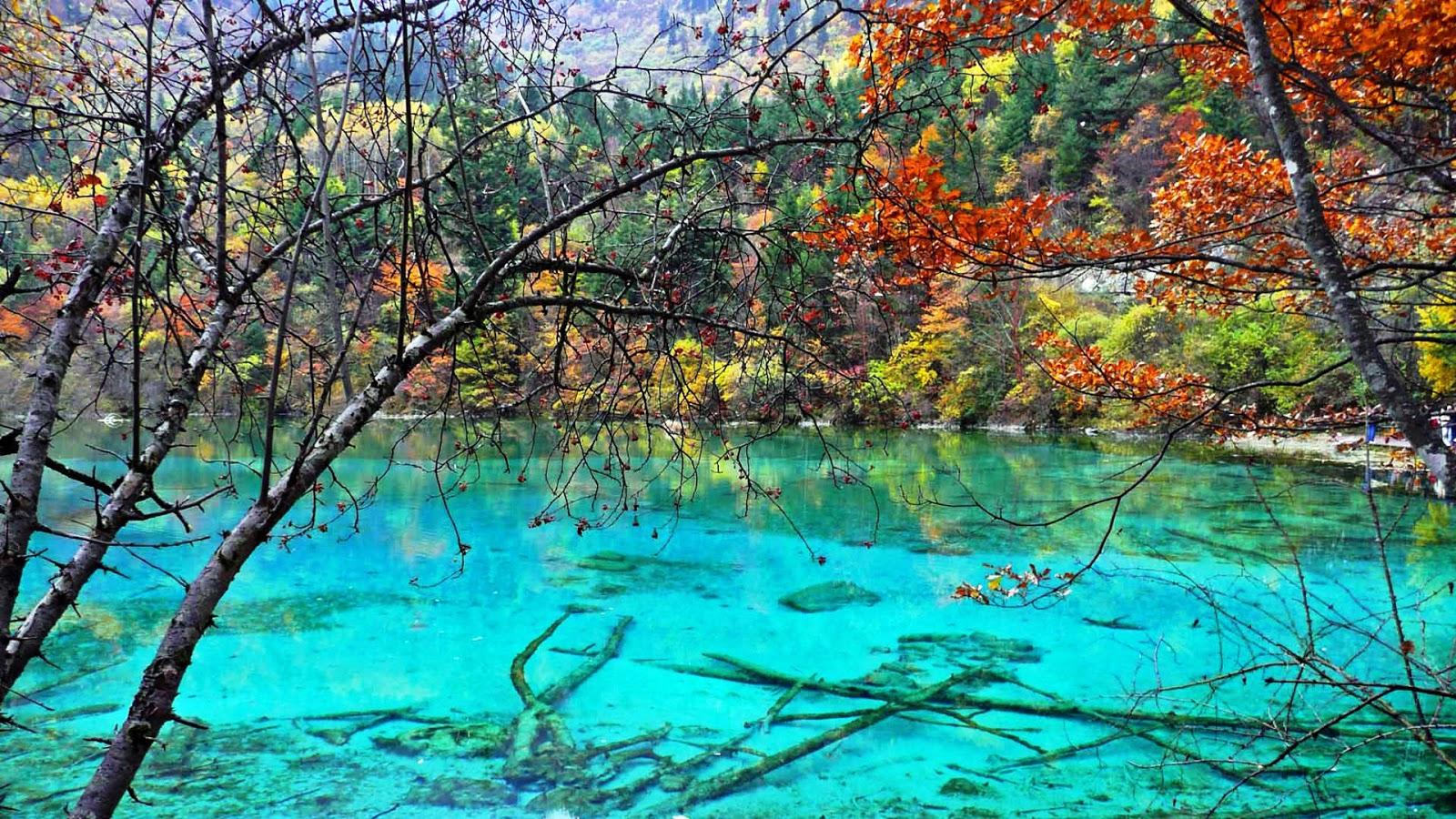 Five Flower Lake ile ilgili görsel sonucu