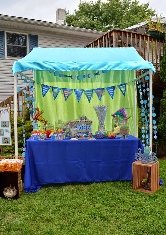 Fellow Party Planner TableTop Treats even used the canopy tutorial for her sonu0027s train themed 1st bday! & Miss Party Mom:  Miss Party Momu0027s  How-To PVC Canopy Tutorial