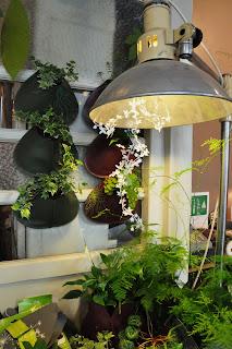 galerie végétale