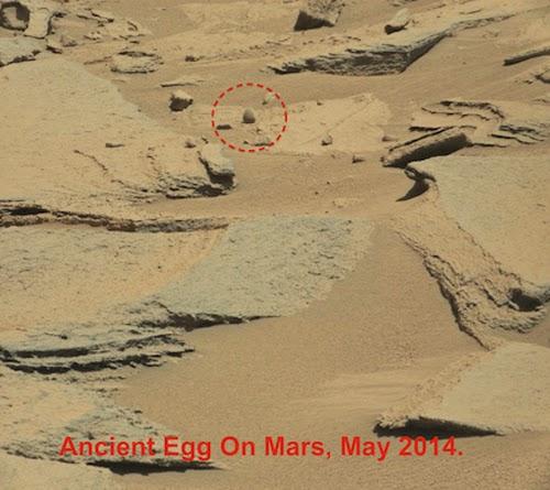Dinosaur Egg On Mars - Rare Photos