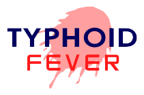 nursing care plan for for typhoid fever definition typhoid fever or