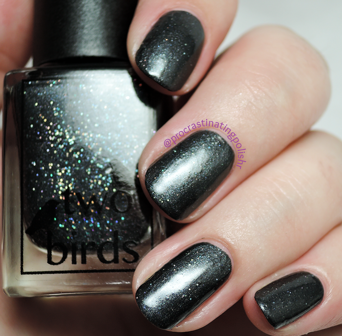 Two Birds Lacquer - Cotton | First Anniversary collection