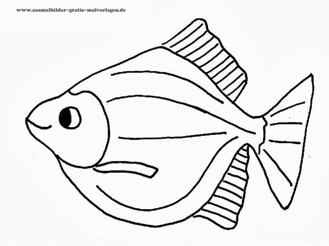 Ausmalbilder Fische Kostenlos - Malbuch - Malvorlagen Kostenlos Fische