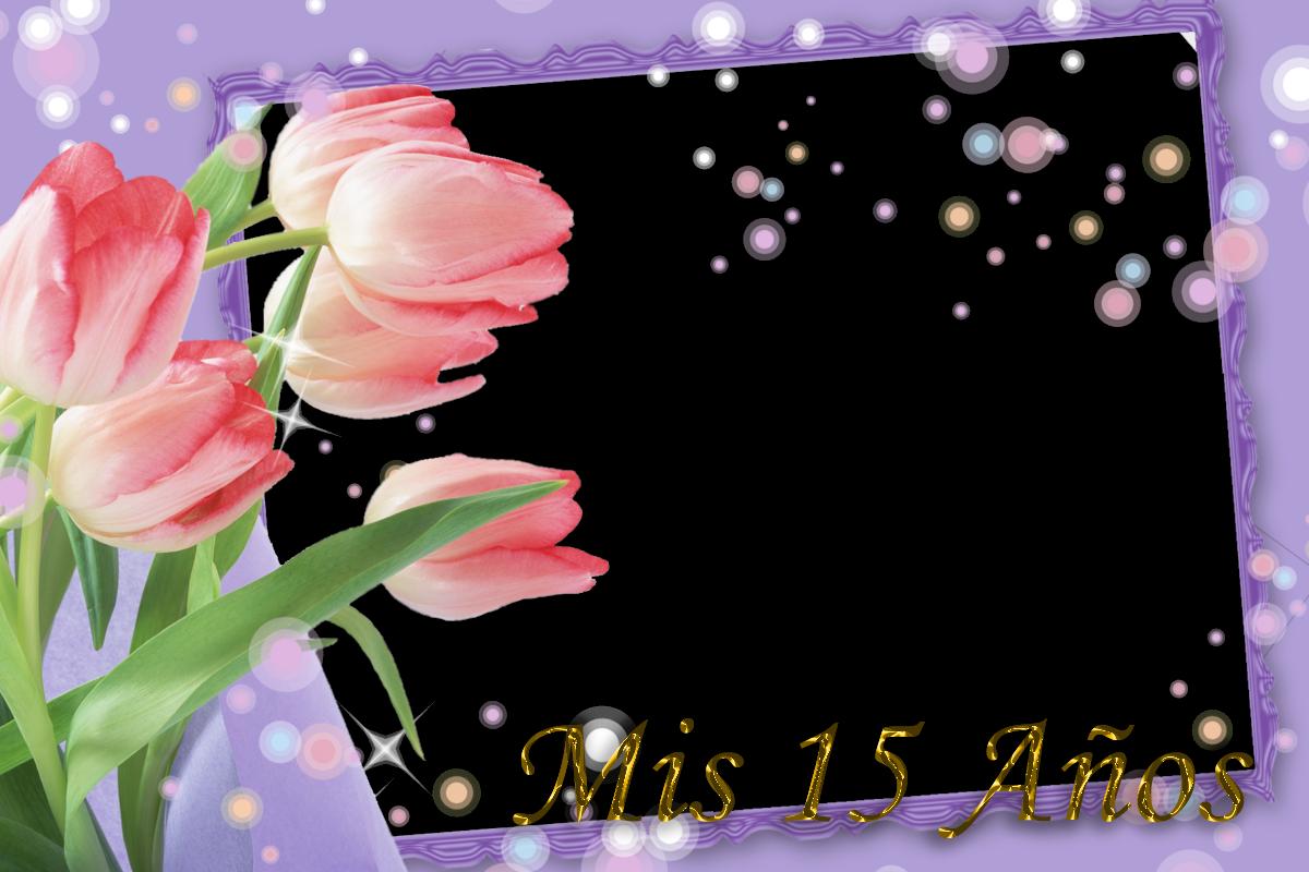 Plantilla para invitación de xv años - Imagui
