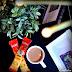 Tea Break with BOH Cham & 3in1 Less Sugar