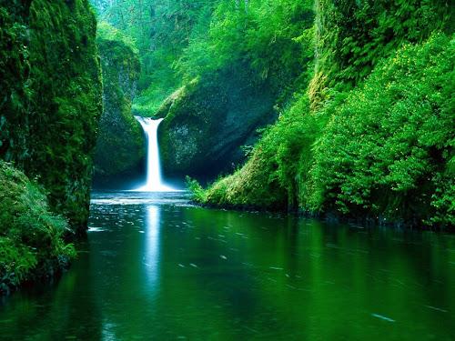 gambar-gambar alam
