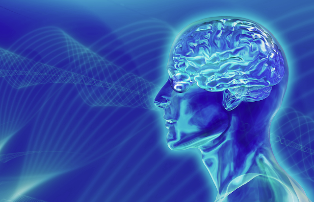 Neuroscience researchers for writers