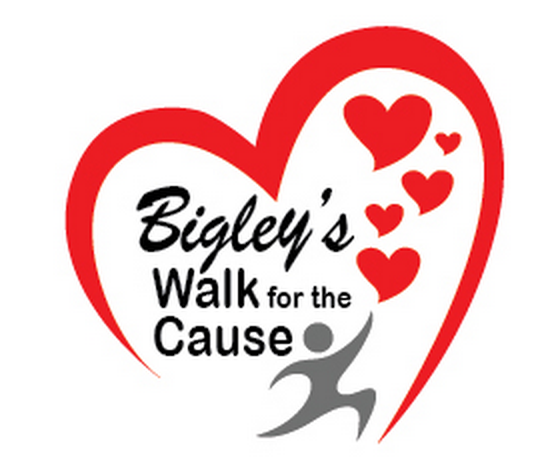 2014 Kawartha Lakes Walk for the Cause Supports Bobcaygeon plus Fenelon Falls Walk In Clinics Image shows red stylized heart containing Bigley's Walk for the Cause a\ a silver stylized person striding and stylized red hearts
