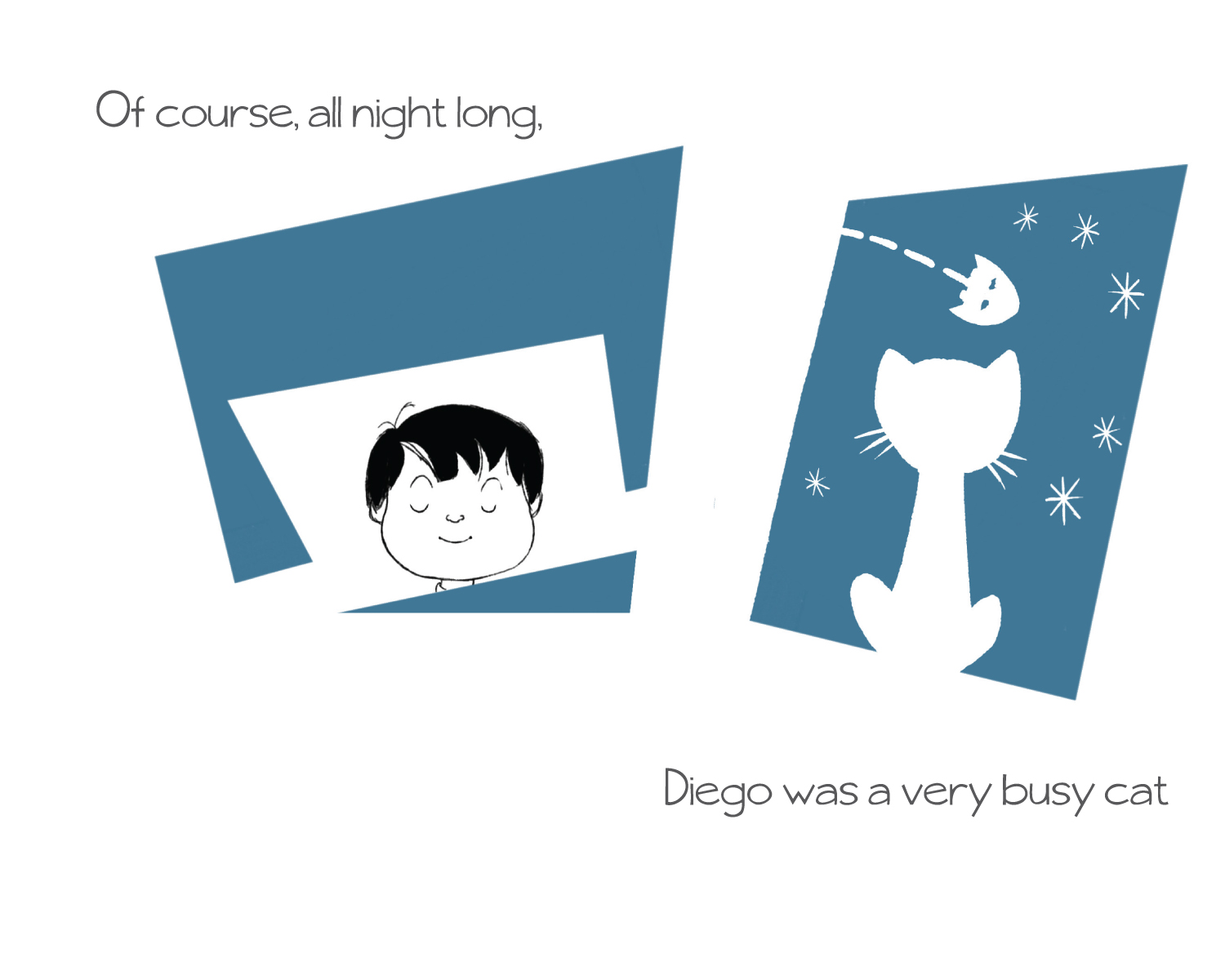 Of course, all night long, Diego was a very busy cat.