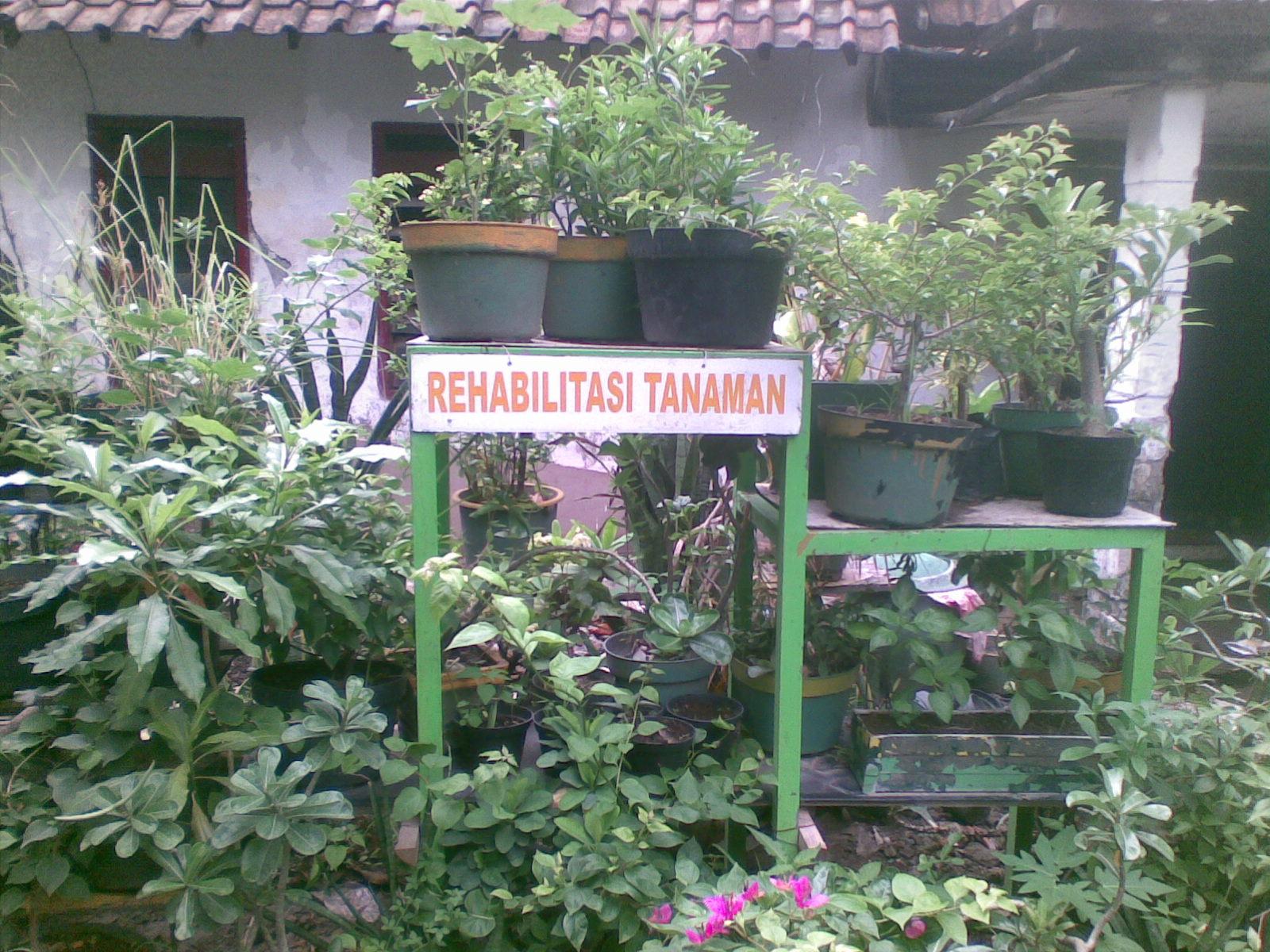 jambangan kung wisata ramah lingkungan wahw33d