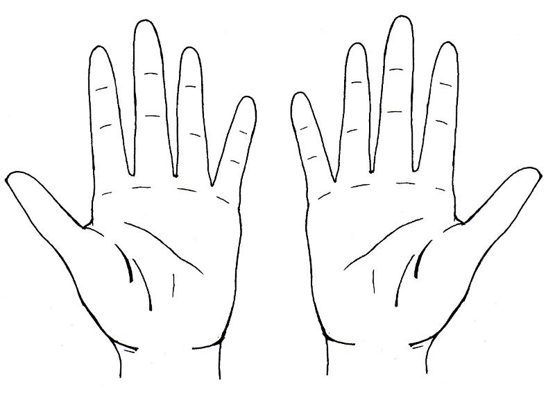 Comment dessiner des mains - Dessin de mains ...