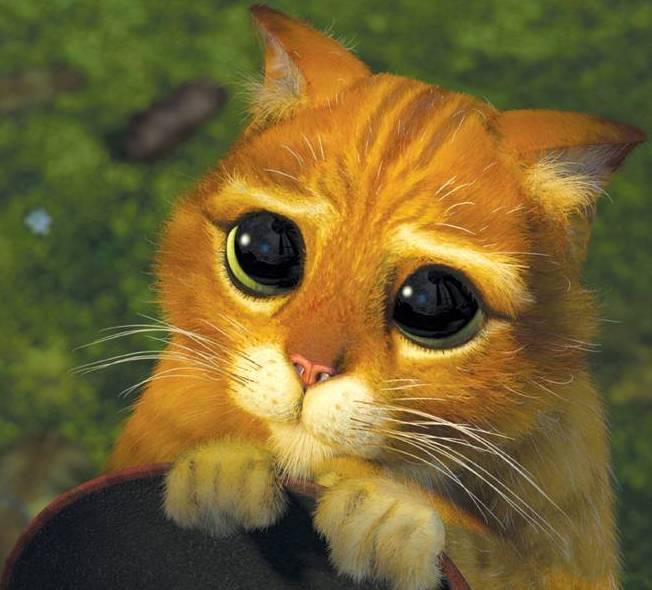 Dibujo del gato con botas con su mirada tierna (ojos enormes)