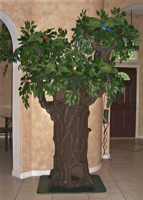 katt träd inomhus