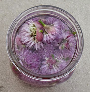 chive blossom vinegar picture tutorial