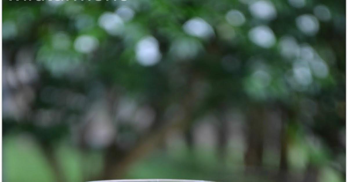 how to make aloe vera oil for skin