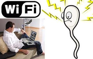 Le WIFI des PC portables affecte la fertilité et la qualité du sperme (Spermatozoïdes) chez l'homme