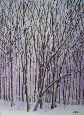 North Woods by Stella de Genova