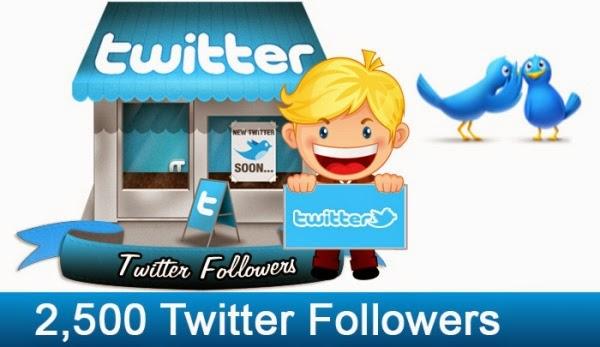 2500 Twitter Followers
