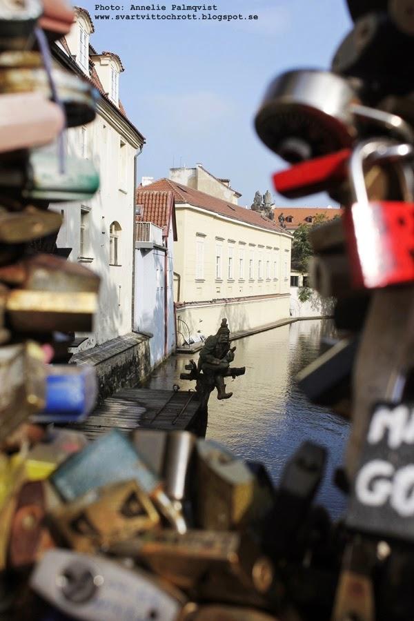 prag, bro, staket med lås, Tjeckien, tjeckiens, storstad, huvudstad,