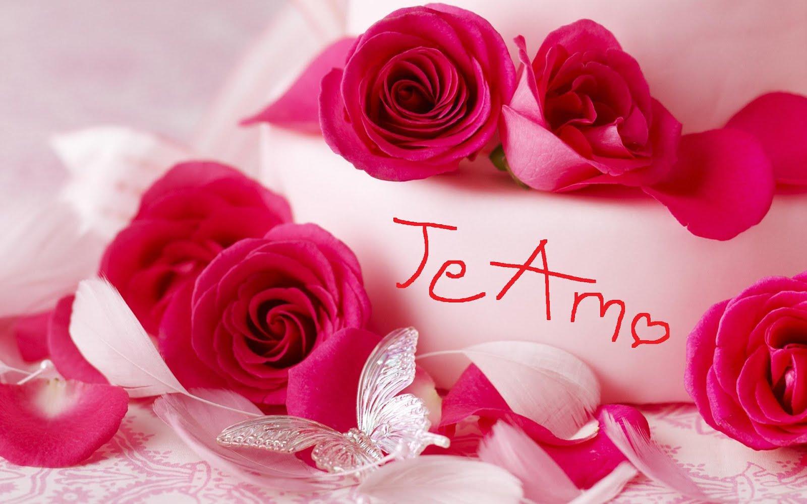 Image gallery hermosas rosas - Rosas rosas hermosas ...